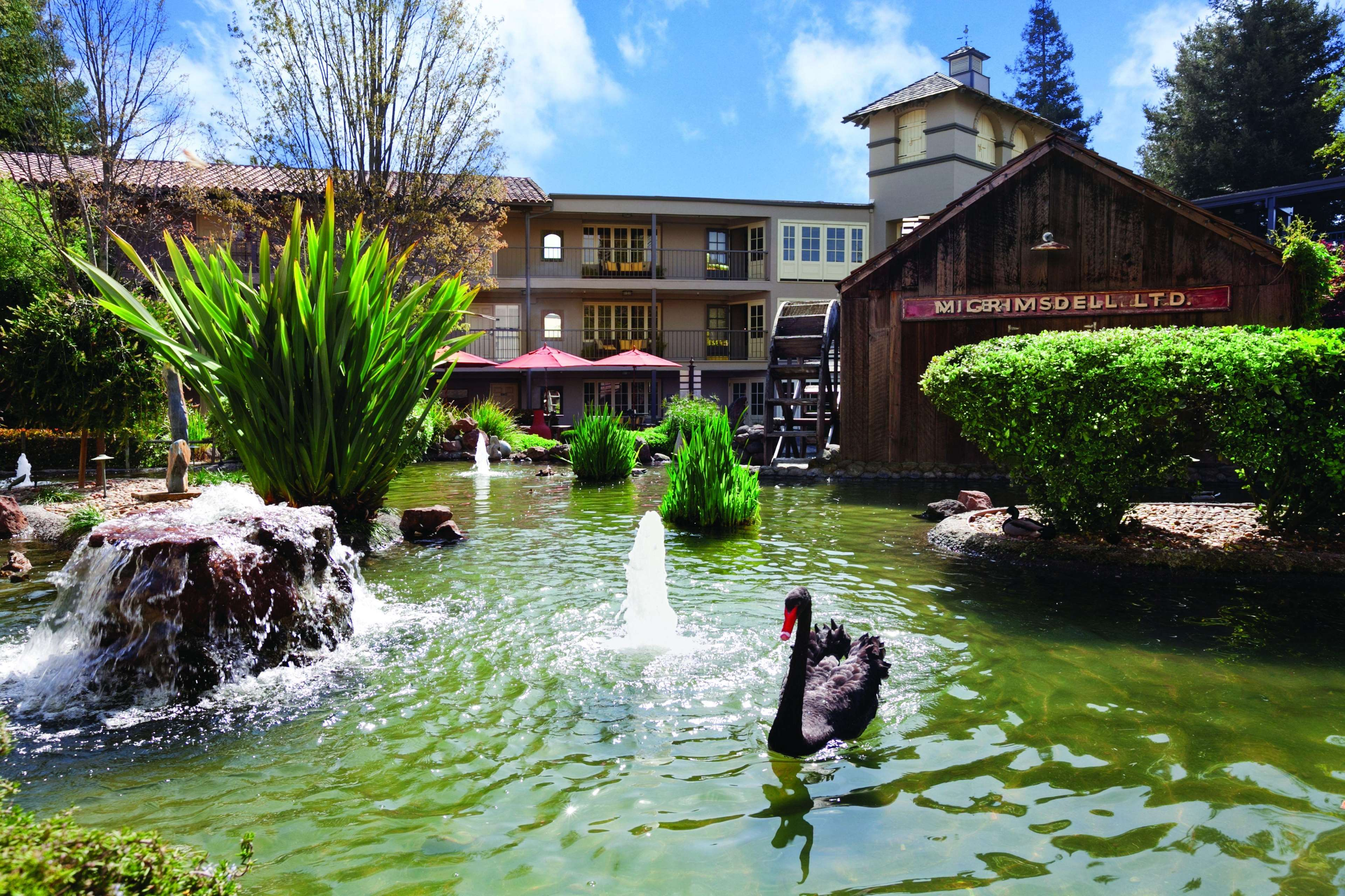 Embassy Suites By Hilton Napa Valley Coupons Near Me In