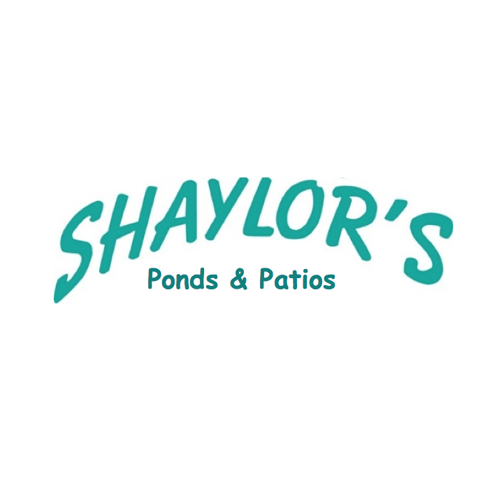 Shaylor 39 s ponds patios coupons near me in williamsport for Pond companies near me