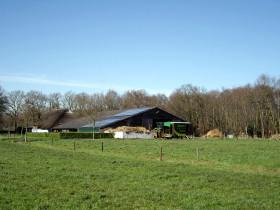 Justa Biologische Kaasboerderij