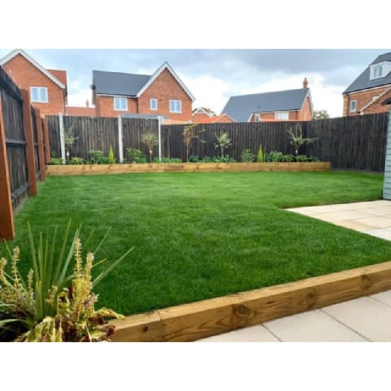 Paragon Group Homes Ltd - Colchester, Essex CO4 5AJ - 07710 439133 | ShowMeLocal.com