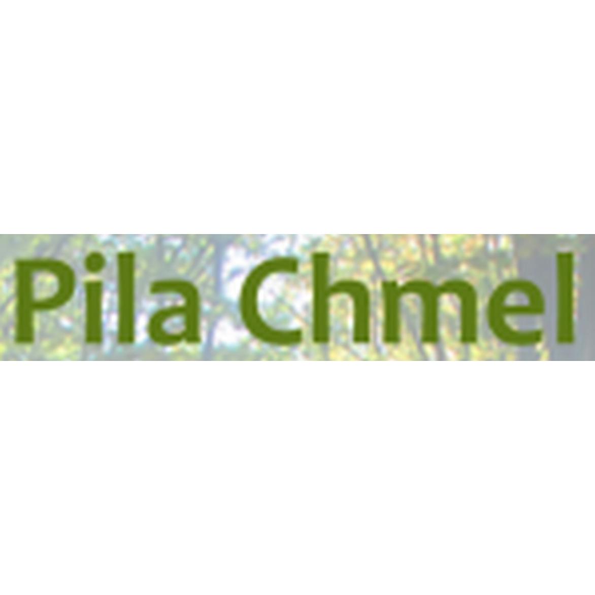 Pila - Zbyněk Chmel