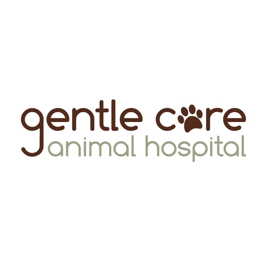 Gentle Care Animal Hospital - Raleigh, NC - Veterinarians