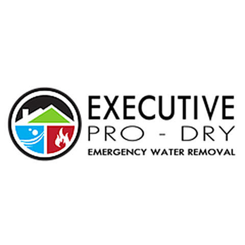Executive Pro-Dry Water, Sewage & Mold Remediation - Colorado Springs, CO 80907 - (719)573-8390   ShowMeLocal.com