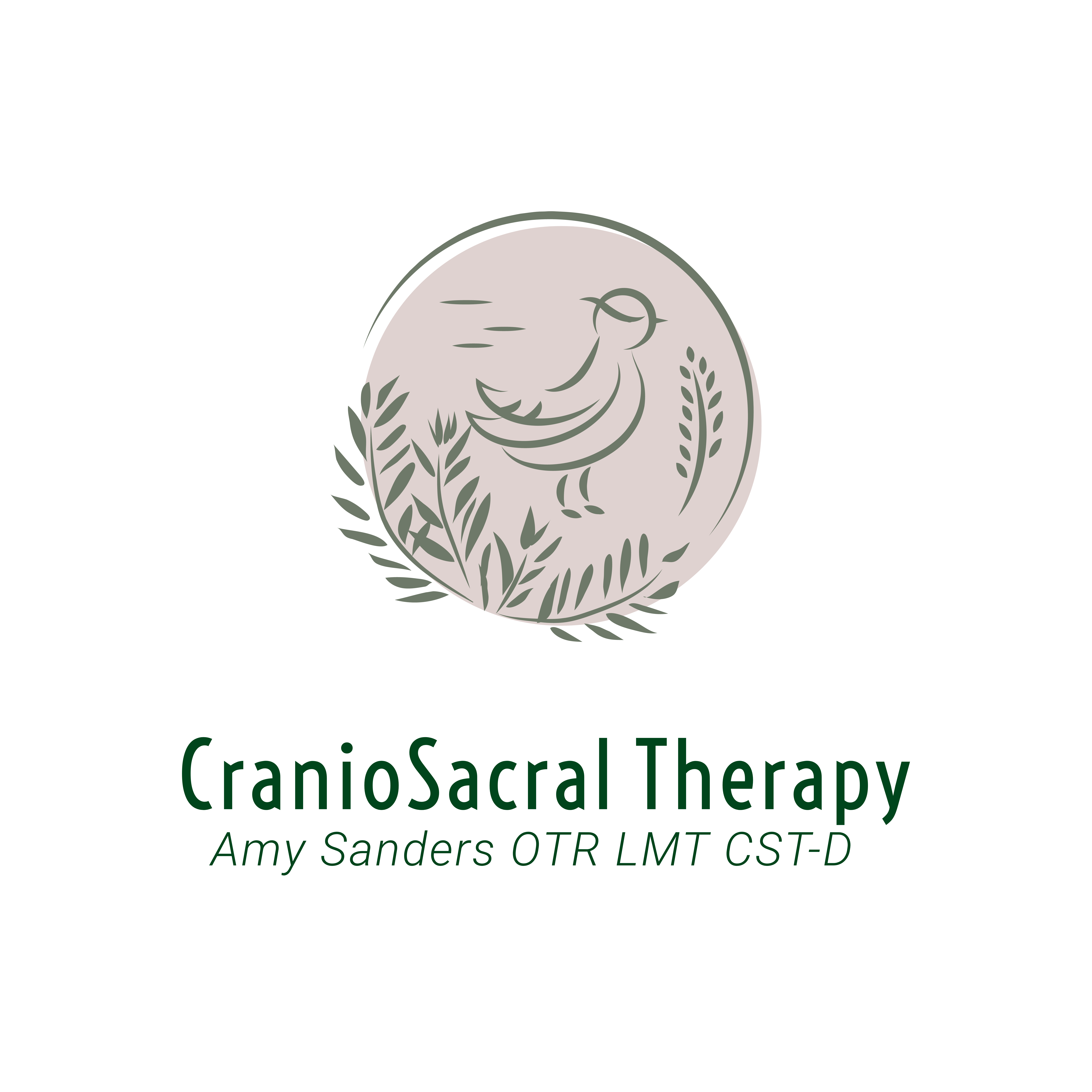 Amy Sanders Therapy