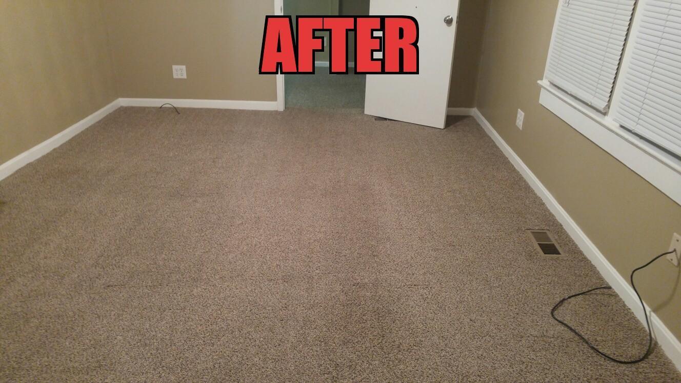 Aaa carpet cleaning louisville ky meze blog all timate cleaning pros louisville ky 40229 by aaa arlington carpet baanklon Image collections