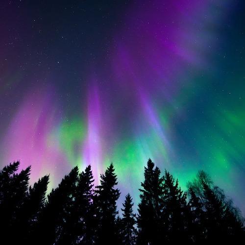 Northern Lights Insurance Agency - Mesick, MI - Insurance Agents