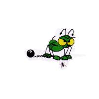 Bad Boys Termite & Pest Control