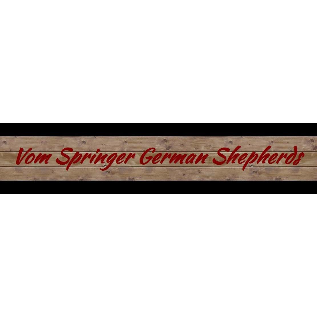 Vom Springer German Shepherds