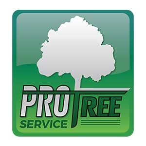 Pro Tree Service
