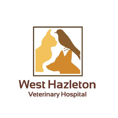 West Hazleton Veterinary Hospital