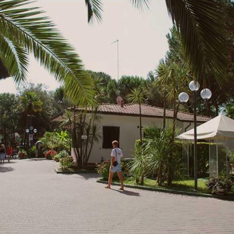 Campeggi Lilly Pineta