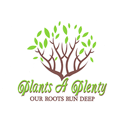Plants-A-Plenty