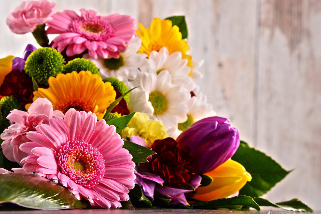 Днем, картинки цветов на день учителя