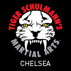 Tiger Schulmann's Martial Arts (Chelsea, NY)