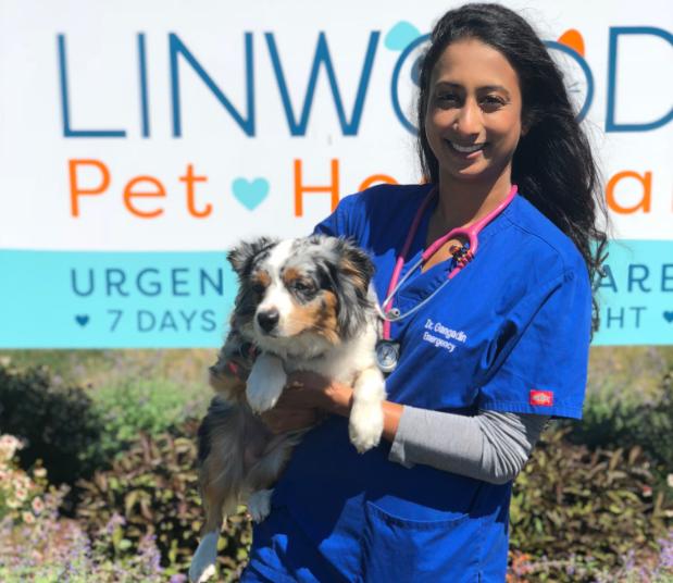 Linwood Pet Hospital