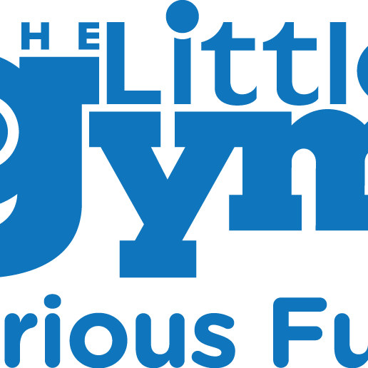 The Little Gym - Seattle, WA - Sports Clubs