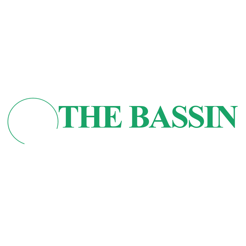 The Bassin Law Firm, PLLC