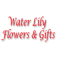 Water Lily Flowers & Gifts