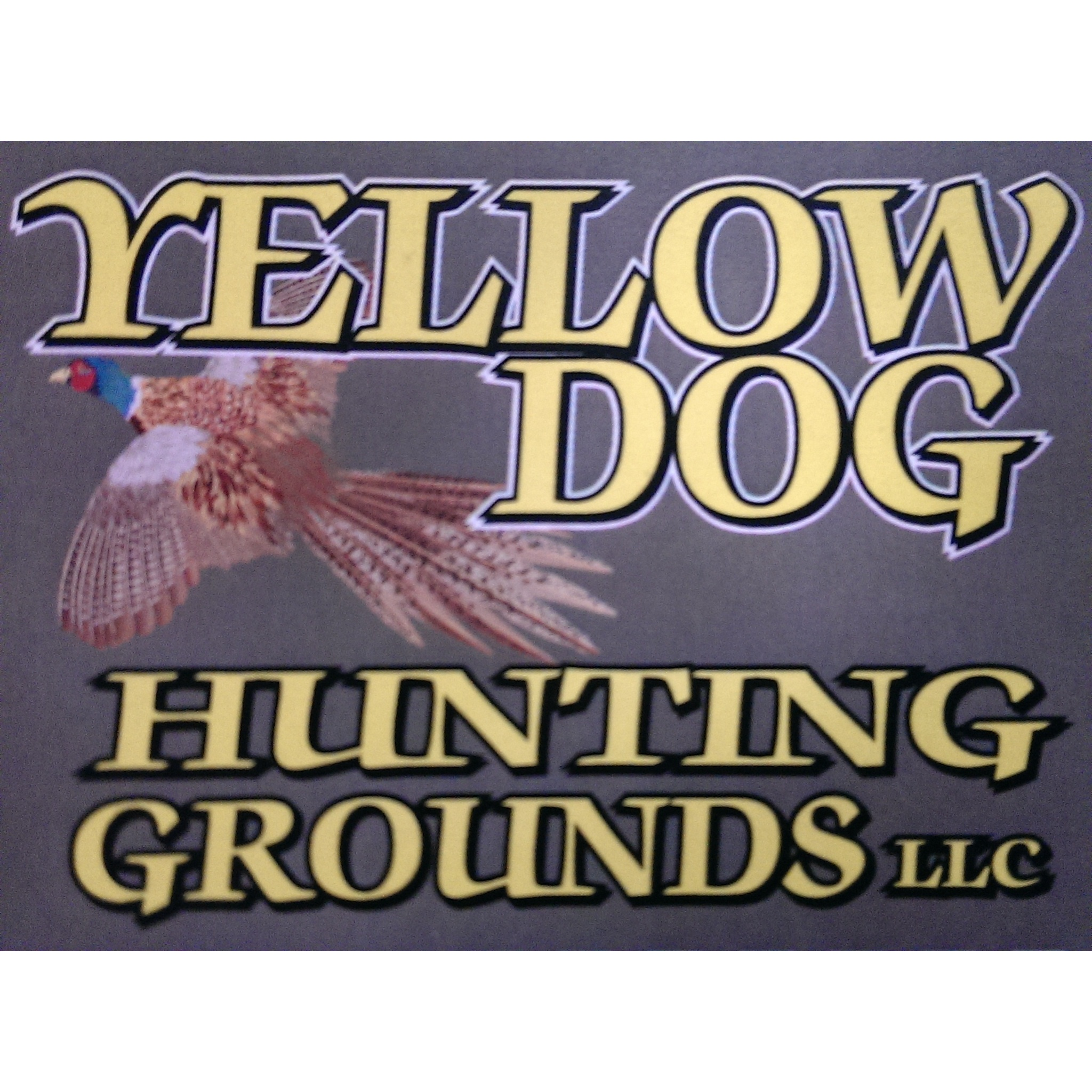 Yellow dog hunting grounds llc in kane pa hunting for Oklahoma fishing license age