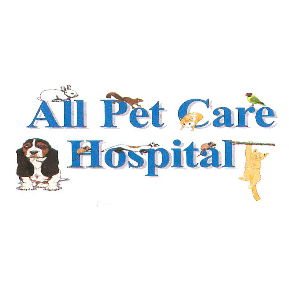 All Pet Care Hospital - Clearwater, FL 33755 - (727)408-6631 | ShowMeLocal.com