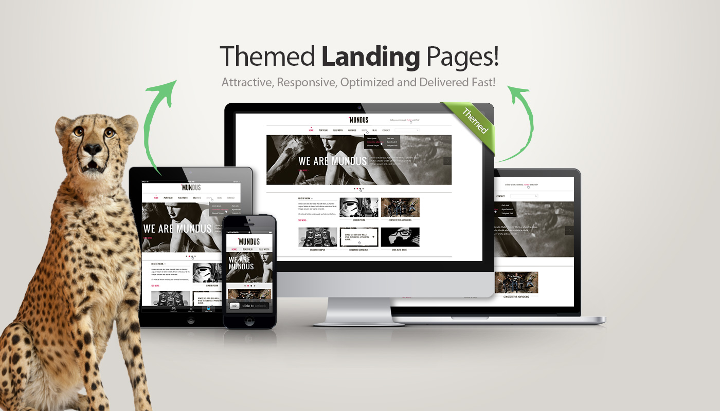 Cheetah Landing Pages In Denver Co 80206