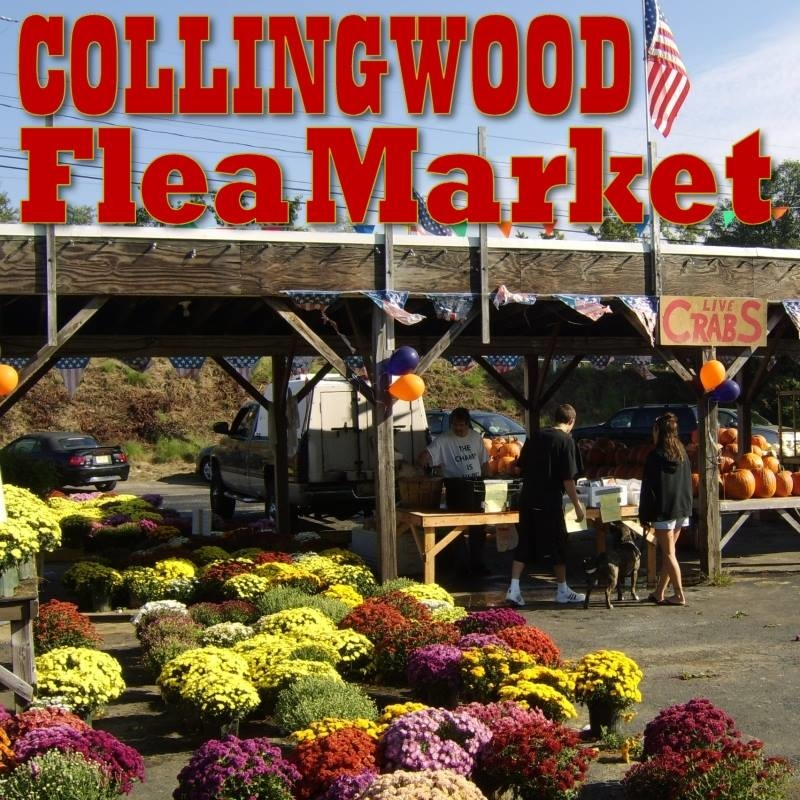 Collingwood Auction & Flea Market Coupons Near Me In