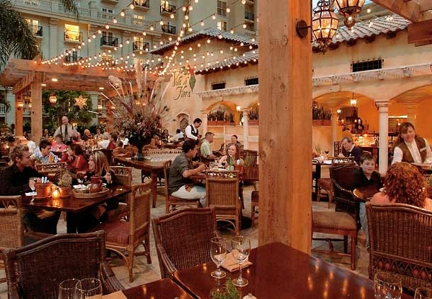 Hotels Near Gaylord Palms Resort And Convention Center Orlando Fl