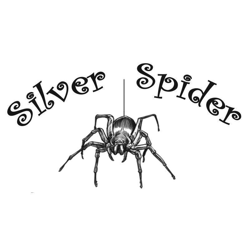 Silver Spider - Mount Vernon, IA - Card & Gift Shops