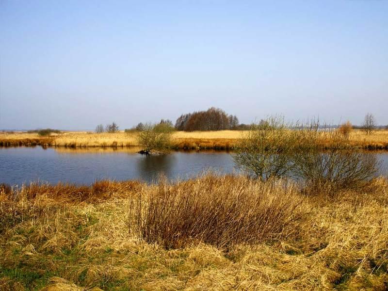 Groninger Landschap Stichting Het