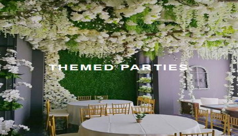Electric Party Rentals