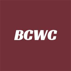 Bosquez Chiropractic & Wellness Center - Omro, WI - Chiropractors
