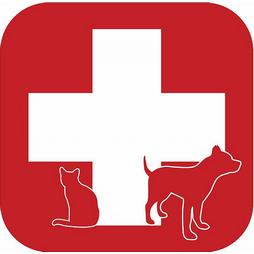 MVDr. SOUKUP - VETERINÁRNÍ LÉKAŘ Logo
