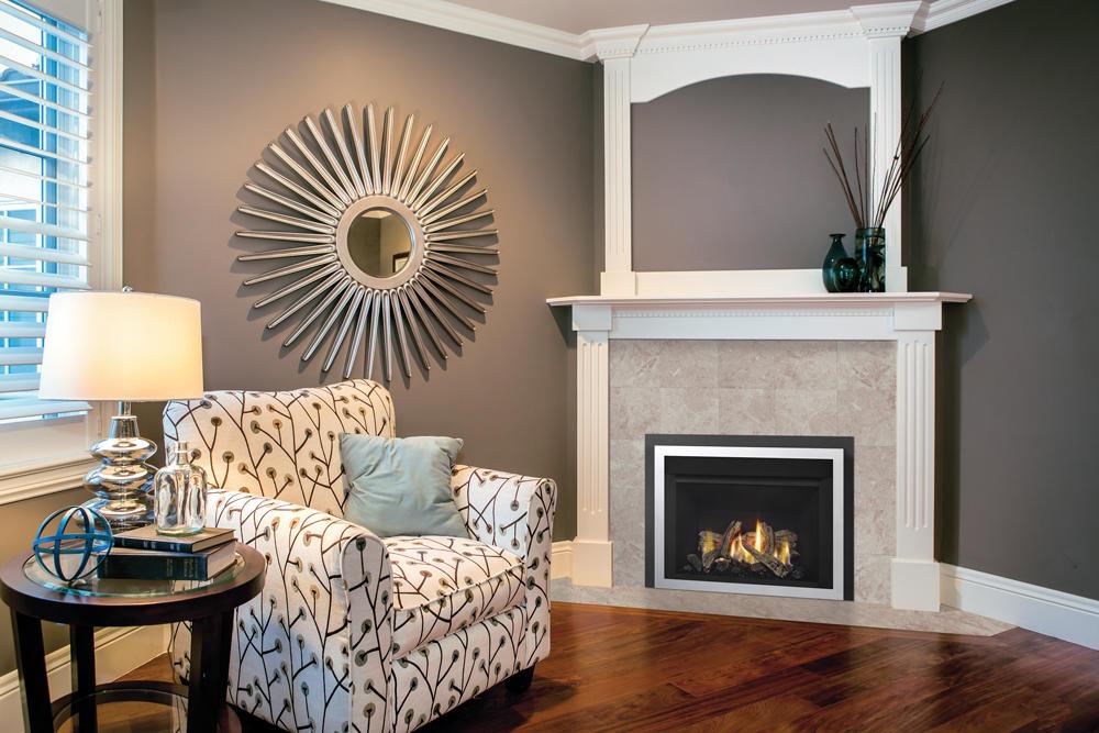 Fireplace Gallery in Edmonton: Regency Horizon Small Gas Fireplace Insert - Contemporary - HRI3