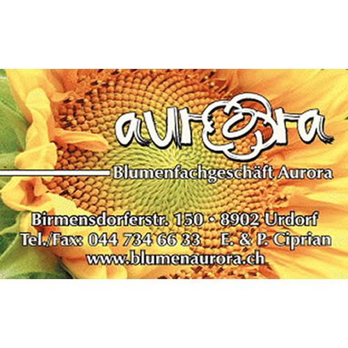 Blumen Aurora GmbH