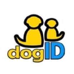 Dog Id Collar