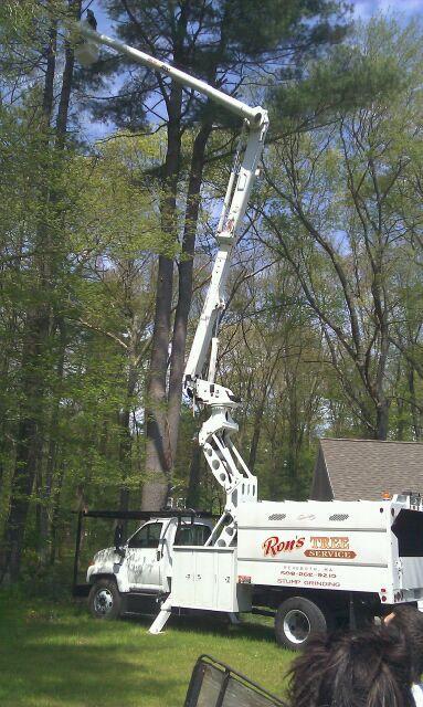 Ron S Tree Service Rehoboth Massachusetts Ma