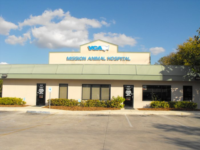 Vca Mission Animal Hospital Coupons Near Me In San Antonio