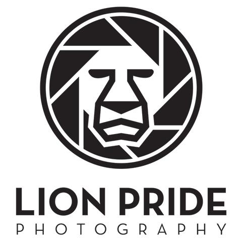 Lion Pride Photography