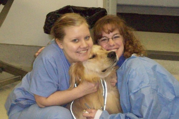 VCA 12-Mile Animal Hospital, Gresham Oregon (OR ...
