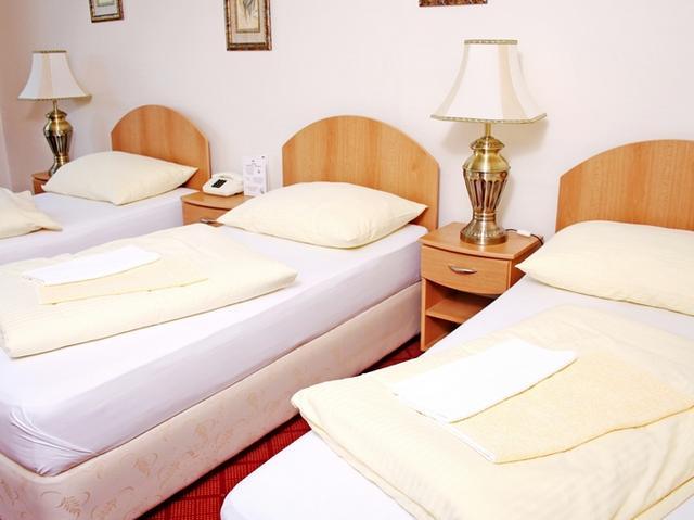 Hotel Patria Trutnov