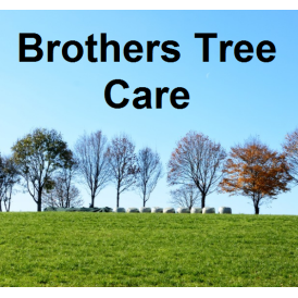Brothers Tree Care