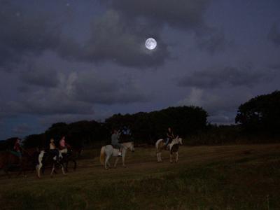 Gunstock Ranch image 9