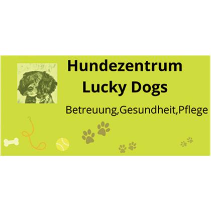 Bild zu Hundezentrum Lucky Dogs in Oberhausen im Rheinland