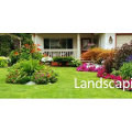 Curb Appeal Lawn Care & Landscaping