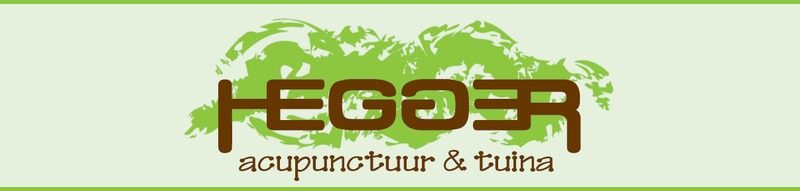 Hegger Acupunctuur & Tuina Massage