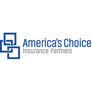America 39 S Choice Insurance Partners In Wixom Mi 48393