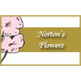 Norton's Flowers