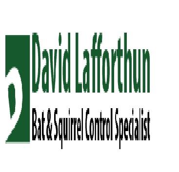 Lafforthun David W