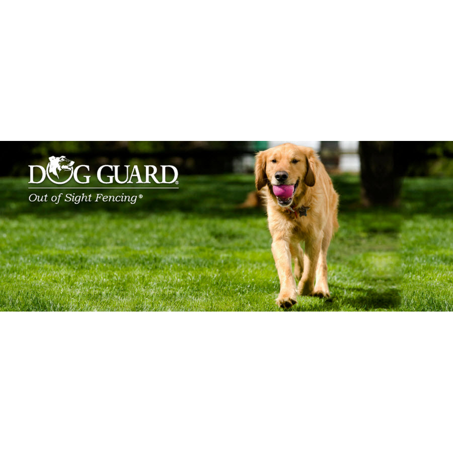 Clear Boundaries with Dog Guard