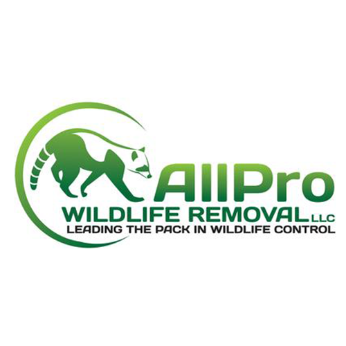 AllPro Wildlife Removal LLC